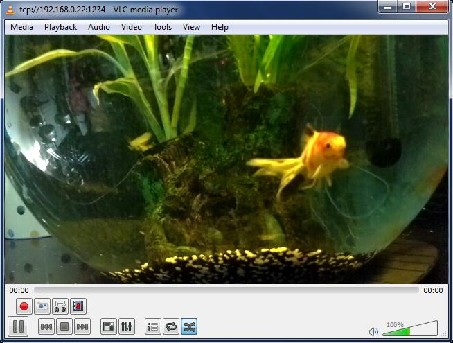 Fishcam1